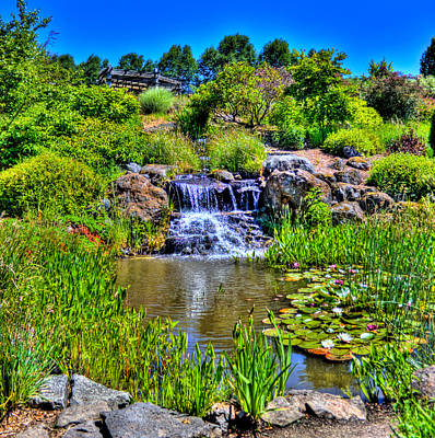 Photograph - Oregon Garden Pond by Jonny D