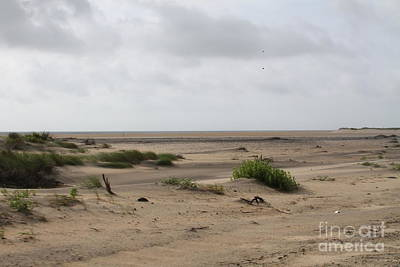 Oregon Inlet Sand Flats Art Print by Cathy Lindsey