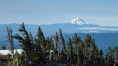 Freedmen Photograph - Oregon, Mount Hood by Matt Freedman