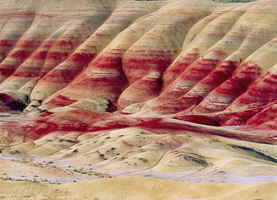 Stripe.paint Photograph - Oregon Painted Hills by Anonymous