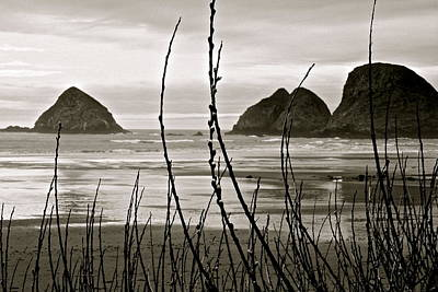 Digital Art - Oregon Seascape by Milton Thompson