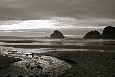 Digital Art - Oregon Seashore by Milton Thompson