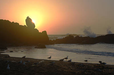 Photograph - Oregon Sunset by Ron Roberts