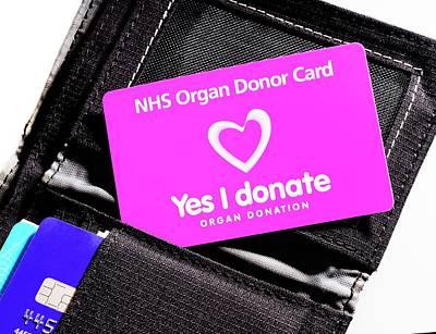 Organ Donor Card In A Wallet Print by Cordelia Molloy