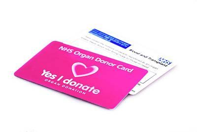 Organ Donor Cards Print by Cordelia Molloy