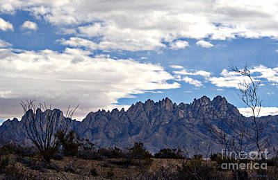 Photograph - Organ Mountain Landscape by Barbara Chichester