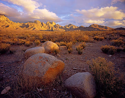 Photograph - Organ Mountains Sunset by Tom Daniel