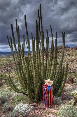 Organ Pipe Cactus The Visitor 1 Art Print by Bob Christopher