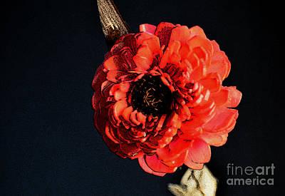 Photograph - Organic Beauty by Manjot Singh Sachdeva