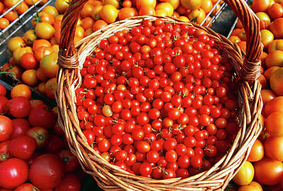 Organic Cherry Tomatoes Art Print