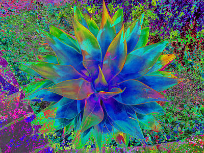 Digital Art - Organza Agave by Stephanie Grant