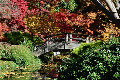 Photograph - Oriental Bridge In Autumn by Jim Martin