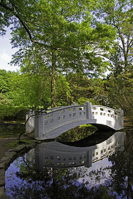 Photograph - Oriental Garden Bridge by David Freuthal