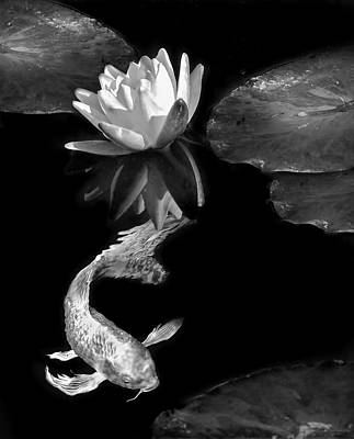Photograph - Oriental Koi Fish And Water Lily Flower Black And White by Jennie Marie Schell