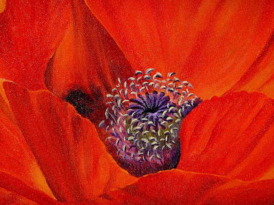 Painting - Oriental Poppy by Jo Appleby