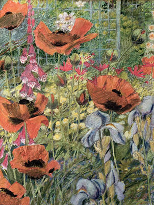 Garden Drawing - Orientals by Rosalie Bullock