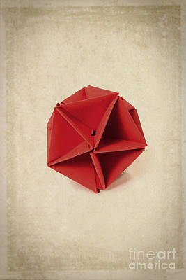 Origami Photograph - Origami  by Edward Fielding