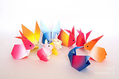 Origami Photograph - Origami Rabbit Conference by Nobi Nagase