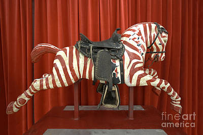 Original Zebra Carousel Ride Art Print by Liane Wright