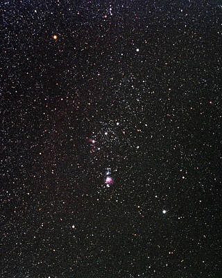 Photograph - Orion by Alan Ley