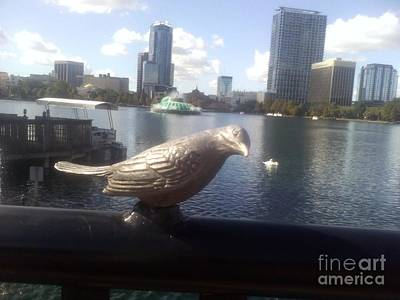 Photograph - Orlando Florida 14 Dt B by Vale Tek