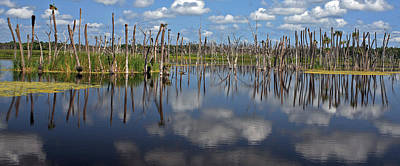 Gator Photograph - Orlando Wetlands Cloudscape 5 by Mike Reid