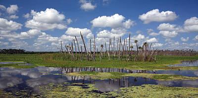 Wetlands Photograph - Orlando Wetlands Cloudscape by Mike Reid