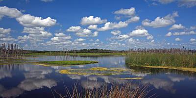 Orlando Wetlands Park Cloudscape 4 Art Print by Mike Reid