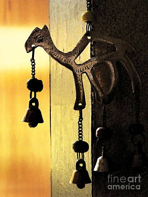 Photograph - Ornament In Golden Light by Ellen Cotton