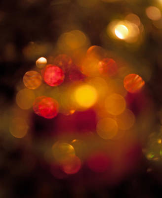 Science Collection - Ornamental Bokeh by Photos By  Cassandra