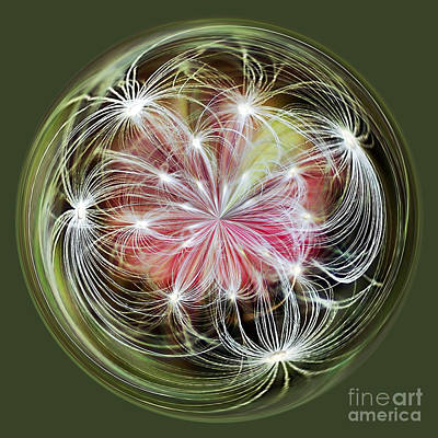 Weed Digital Art - Ornamental Dandelion by Kaye Menner