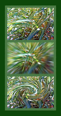 Windblown Mixed Media - Ornamental Ribbon Grass Abstract Triptych by Steve Ohlsen