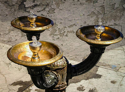 Photograph - Ornate Drinking Fountain by Katie Wing Vigil