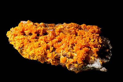 Photograph - Orpiment, Barity, Realgar, With Pyrite by Millard H. Sharp