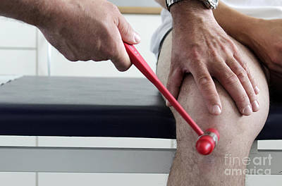 Orthopedist Examines A Patients Knee Art Print
