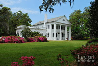 Art Print featuring the photograph Orton Plantation by Bob Sample