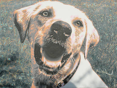 Chocolate Labrador Retriever Painting - Oscar by Sarah  Hood