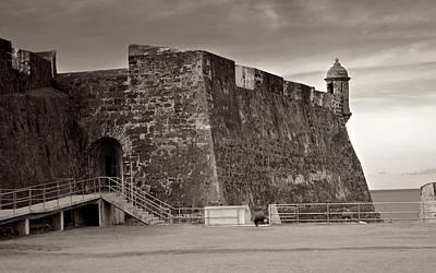 Photograph - Osj 11069sp by Ricardo J Ruiz de Porras