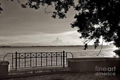 Photograph - Osj 11181sp by Ricardo J Ruiz de Porras