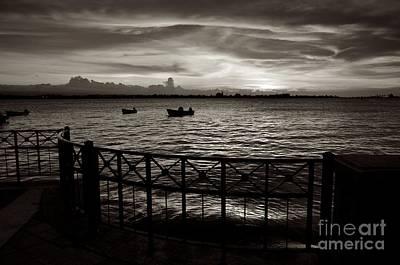 Photograph - Osj 11242sp by Ricardo J Ruiz de Porras