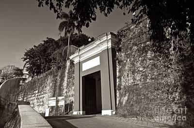 Photograph - Osj 11547sp by Ricardo J Ruiz de Porras