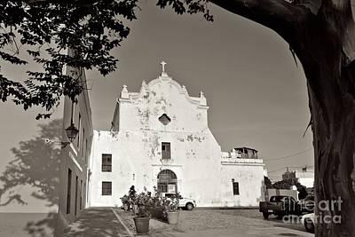Photograph - Osj 11587sp by Ricardo J Ruiz de Porras