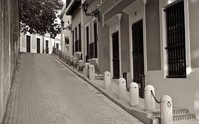 Photograph - Osj 11624sp by Ricardo J Ruiz de Porras