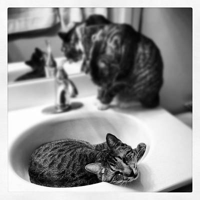Oskar And Klaus At The Sink Art Print by Mick Szydlowski