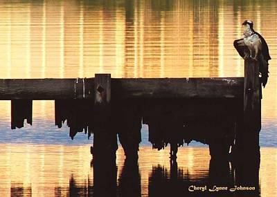 Osprey Art Print by Cheryl Lynne  Leech-Johnson