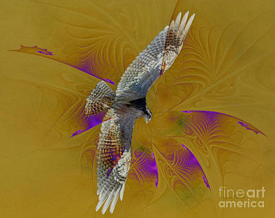 Osprey Mixed Media - Osprey Wild by Deborah Benoit