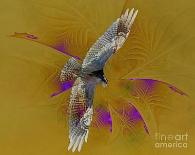 Osprey Mixed Media - Osprey Wild by Deborah Benoit