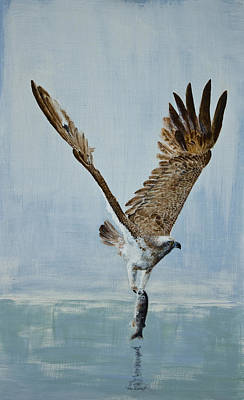 Animals Paintings - Osprey with fish by Alan Pickersgill