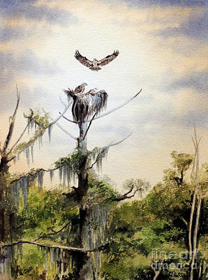 Osprey Painting - Ospreys Nesting Wakulla River by Bill Holkham