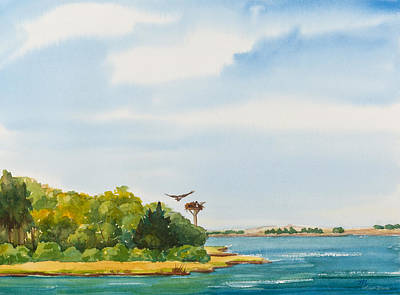 Platform Painting - Ospreys On The Vineyard Watercolor Painting by Michelle Wiarda